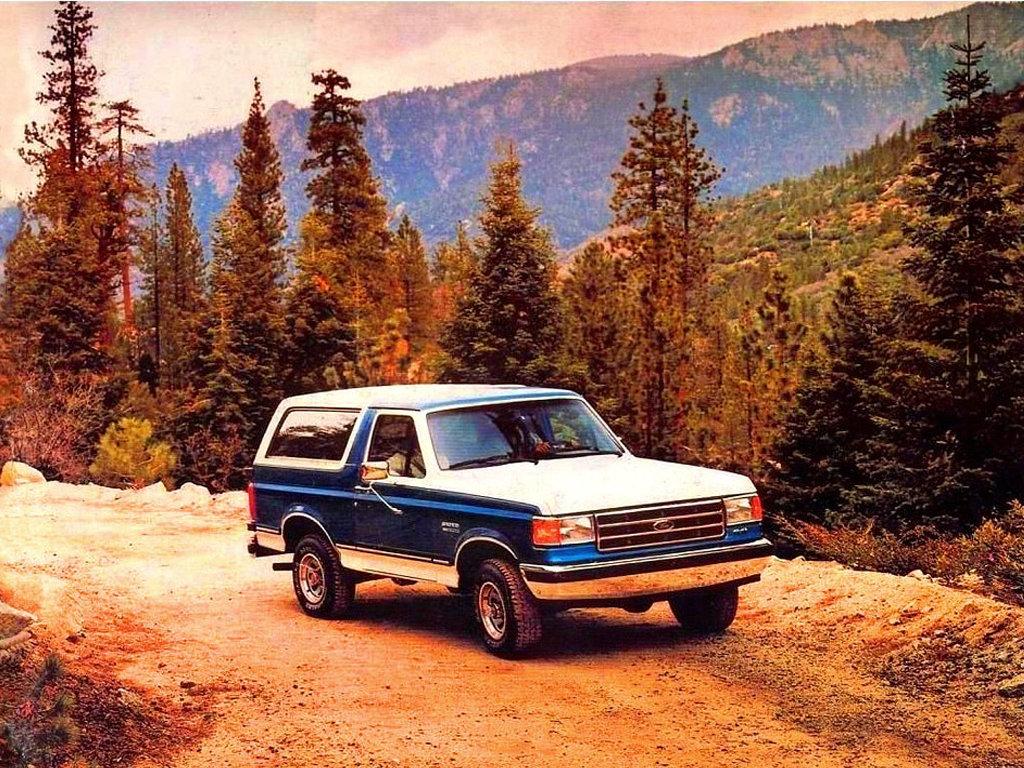 Ford_Bronco_SUV%203%20door_1987.jpg