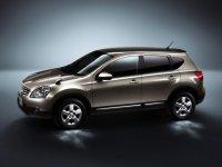 ���������� ����������� Nissan Dualis / ������ ������